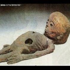 Russos encontram múmia alien em pirâmide do egito - notícias atuais notícias do brasil e do mundo