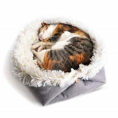 Allacki Soft Plush 2 In 1 Blanket Pad Dog Cat Bed Pet Winter Warm #Allacki