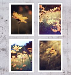 A set of 4 Sepia Color Fine art photography Flower by AylilAntoniu