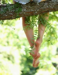 Tempo para estar na natureza