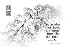 Bamboo Tree With Two Birds Bends In The Wind