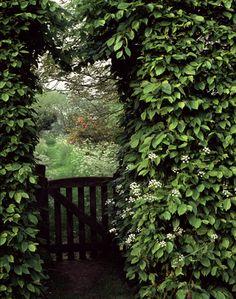Garden gate -- Lisa Hubbard photography
