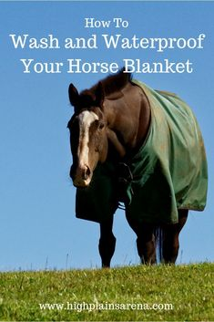The right way to wash your horse blanket and restore waterproofing to make your blanket last longer. #horsetack #horseblanket