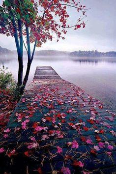 World Best Things: Beautiful Nature Lake Dock, Thousand Islands, Canada Beautiful World, Beautiful Places, Beautiful Pictures, Beautiful Scenery, Amazing Places, Natural Scenery, Beautiful Beautiful, Beautiful Flowers, Absolutely Stunning