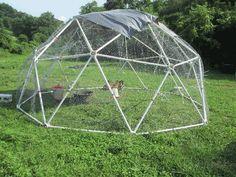 Geodesic Chicken Coop Kits for Sale - Zip Tie Domes - Geodesic Chicken Tractor