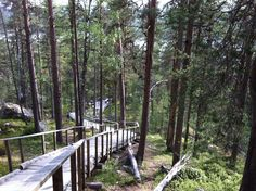 Karhunpesäkivi, Inari Garden Bridge, Finland, Deck, Outdoor Structures, Outdoor Decor, Plants, Front Porches, Plant, Decks