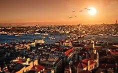 Vol d'oiseaux au dessus d'Istanbul, Turquie. #croisière #croisierenet.com #voyage #Istanbul #Turquie #croisièreméditerannée