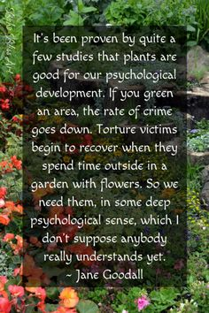 It's been proven by quite a few studies that plant are good for our psychological development. Quote by Jane Goodall