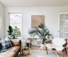 neutral living room with tropical plants