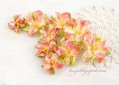 Klaudia/Kszp: Kwiatki bez wykrojników - kurs