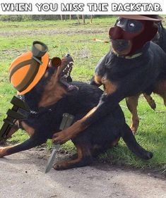 X+2 Team Fortress 3, Tf2 Funny, Valve Games, Tf2 Memes, Gamer Humor, Funny Games, Overwatch, Game Art, I Movie