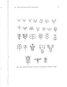 "Stylized plant line drawings - from ""Ancient Symbolism in Lithuanian Folk Art."""