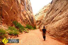 Entre as terras vermelhas de Utah, caminhe pelas melhores trilhas do Capitol Reef National Park