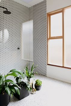 black and white patterned tile and bathroom plants, plus black shower head