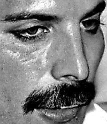 I Want Him Back, Freddie Mercury