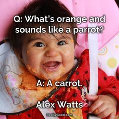 Q: Whats orange and sounds like a parrot? A: A carrot. Alex Watts #quote