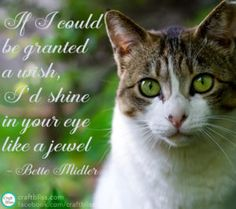 www.craftbliss.com { Pinterest Quotes Pinterest Summer Quotes Summer Quote Craft Bliss Happiness Quotes Happy Quotes Inspirational Quotes Facebook Quotes Happy Quotes Pet Quotes Funny Quote Pinterest Tips Bette Midler Cat Pictures Cat Quotes Wish Quotes Pinterest Quotes CraftBliss }
