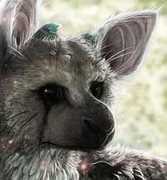 +The Last Guardian+ by KasaraWolf on DeviantArt