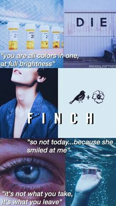 Theodore Finch   All the Bright Places by Jennifer Niven All The Bright Places Quotes, Theodore Finch, Tears In Eyes, Place Quotes, Sister Act, Favorite Book Quotes, Book Suggestions, Books For Teens, The Fault In Our Stars
