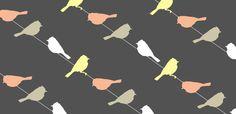aimee wilder bird wallpaper - Google Search