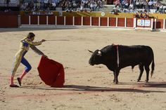 Bullfighting, Madrid
