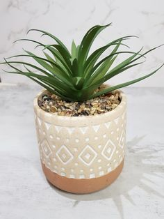 Spiky Succulent, Artificial Succulents, Drawing Reference, House Plants, Planter Pots, Ceramics, Garden, Products, Craft