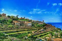http://rentals.villafinca.com/rentals/villa-manacor-vista-alegre---0496-W354BCPZREDNA130542IEN.html
