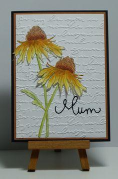 Cathys Card Spot: Flowers for Mum