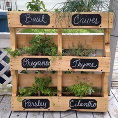 Starting a Vertical Garden – Style Gardening Herb Garden Pallet, Small Gardens, Wood Pallets, Houseplants, Outdoor Ideas, Outdoor Decor, Ladder Decor, Backyard, Herb Gardening