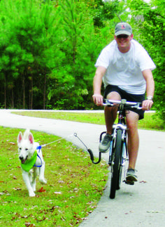 The ultimate bike accessory to allow you and your dog to safely ride together.  #bikeattachment #dogs #exercisingwithdogs