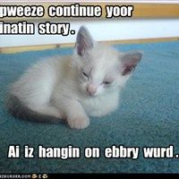 She Said Just Before She Began to Snore - LOLcats is the best place to find and submit funny cat memes and other silly cat materials to share with the world. We find the funny cats that make you LOL so that you don't have to. Silly Cats, Cats And Kittens, Cute Cats, Cat Fun, Funny Cat Memes, Funny Cats, Cute Baby Animals, Funny Animals, Animal Funnies
