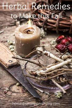 Make these autumn herbal remedies and stock your home apothecary with remedies for cold and flu season digestive trouble insomnia and more. Holistic Remedies, Natural Health Remedies, Herbal Remedies, Natural Cures, Insomnia Remedies, Headache Remedies, Sleep Remedies, Migraine Headache, Bloating Remedies