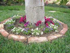 Backyard, Patio, Yard Landscaping, Landscaping Ideas, Cement, Landscape, Plants, Outdoor, Gardens