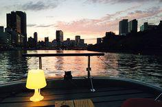 夜景クルーズ 水都大阪の川を巡りながら粋に楽しむバータイム