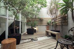 aménagement petit jardin avec jeunes arbres en pots, banc en bois et galets blancs comme déco