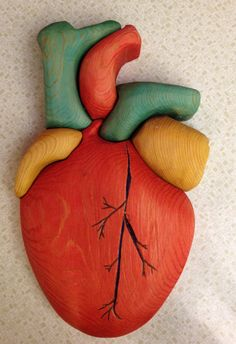 Anatomical Human Heart Puzzle by TedsShop on Etsy