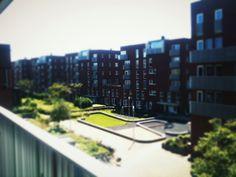 nieuwbouw veiling haven