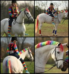 Rainbow Brite Pony! Looking for Halloween horse costume ideas? Follow the link to see many more photos submitted by equestrians! Some great ideas here! :)