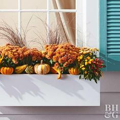 How To Make Gorgeous Fall Window Boxes