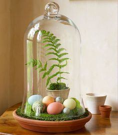 This superfast arrangement showcases the delicate tints of dyed chicken eggs and plain quail eggs. Just fill a terracotta saucer with craft-store moss, add a potted fern, and cover with a glass bell jar — done!