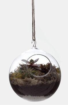Hanging Globe Terrar