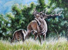 Wild Animal Original art Painting on Canvas deer by artpucik on Etsy Baby Cats, Baby Animals, Funny Animals, Animal Cartoon Video, Wild Deer, Farm Pictures, Animal Activities, Watercolor Animals, Cute Gif