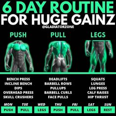Push Pull Workout Routine, Push Pull Legs Workout, Push Workout, Workout Splits, Gym Workout Chart, Workout Routine For Men, Gym Workout Tips, Best Workout Split, Full Leg Workout