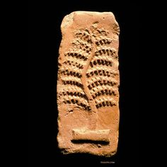 Pipal Tree Tablet. discovered at Harappa in 1995
