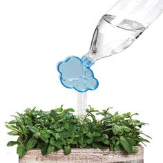 Something fun for those plastic bottles ^^(Embout d'arrosoir Rainmaker / Pour bouteilles en plastique)