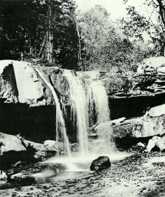 The future site of Frank Lloyd Wright's Fallingwater, 1912