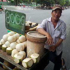 Fresh coconuts for sale in Saigon (8000 = .40c)