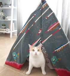 How To Make Your Own Kitty Teepee