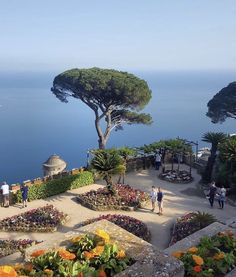Villa Rufolo - Ravello, Italy Amazing Places To Experience Around The Globe Places Around The World, The Places Youll Go, Places To See, Around The Worlds, Italy Map, Italy Travel, Italy Italy, Lac Como, Beautiful World