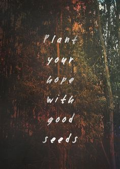 But plant your hope with good seeds Don't cover yourself with thistle and weeds. - Mumford & Sons / Thistle & Weeds